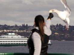Ferry and passenger boat operators are hoping to repeal a law that will make them carry life-saving craft to prevent hypothermia in disaster situations.