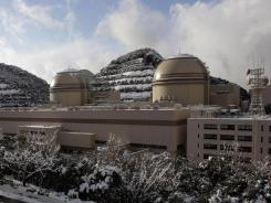 Reactor No. 3, right, and No. 4 at Kansai Electric Power Co's Ohi nuclear power plant in Ohi, Japan, on Jan. 26.