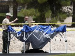 The body of a male chimpanze lies on the ground after being shot by police Thursday in Las Vegas.