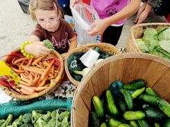 Kianna Lessard, 4, of Lewiston, Maine, helps her mother pick broccoli from Valley View Farm during the Lewiston Farmers Market on Sunday.
