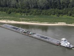 Barges and their towboats accumulate alongside the Mississippi banks of the Mississippi River near Greenville, Miss.
