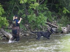 A police dog searches the banks of the Credit River in Hewick Meadows Park in Mississauga, Ontario, on Aug. 16 after police discovered a woman's severed head.