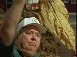 A farmer in South Carolina inspects a tobacco leaf.