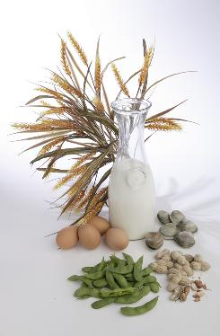 Wheat, milk, eggs, soy, peanuts and shellfish are among common food allergies.