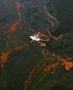 Off Louisiana: A shrimp boat collects spilled oil.
