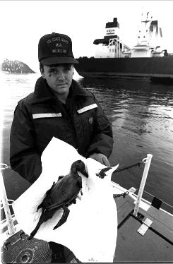 In '89: A Coast Guard engineer holds an oiled duck after the Exxon Valdez spill.
