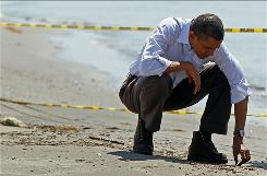 At Port Fourchon, LA.: President Obama picks up balls of tar on the beach last month.