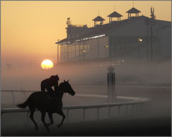 A horse gallops through a shroud of fog at sunrise in this March 10 photo from the Fair Grounds in New Orleans.