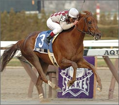 The owners of 2003 Kentucky Derby champion Funny Cide were offered the chance to have the Thoroughbred cloned by a California firm. The proposition was rejected.
