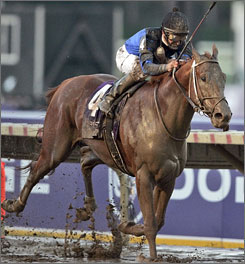 Jockey Robby Albarado rides Curlin to victory in the Breeders' Cup Classic this past Saturday. Curlin overcame one of the most talented fields in the history of the Classic as well as a sloppy surface due to weather conditions.
