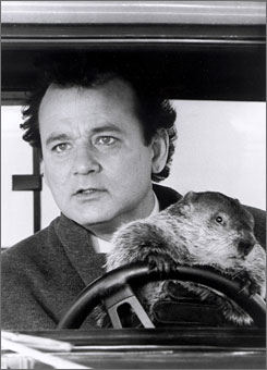 With more rain in the forecast, it could be a 'Groundhog Day' atmosphere in Pittsburgh on Sunday night when the Steelers host the Bengals. Interestingly enough, weatherman Phil Connors, portrayed by actor Bill Murray in the movie, works for a fictional Steel City TV station.