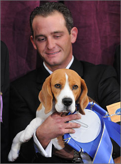 Handler Aaron Wilkerson and Uno celebrate their win in the hound category of the Westminster Dog Show.