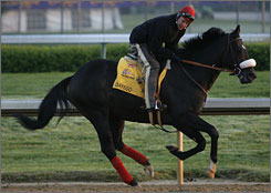 Gayego, with exercise rider Jody Pieper, at Churchill Downs in Louisville last month, will be competing in the Preakness against undefeated Big Brown.