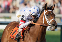 """I'm not afraid of the mile and a half. I'm not afraid of five weeks, three races,"" trainer Richard Dutrow Jr. says of Big Brown. ""The horse just keeps impressing. Any time we've asked him for anything, he's been way ahead of us."""