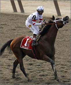 Big Brown, with jockey Kent J. Desormeaux in the irons, fights the reins as he heads to finish in last place at the 140th running of the Belmont Stakes.