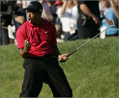 Tiger Woods let out a roar after forcing an 18-hole playoff with Rocco Mediate with his dramatic birdie putt.