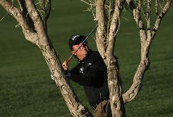 Phil Mickelson checks his club clearance from a lie under a tree on the 11th hole during the second round of the FBR Open last week in Scottsdale, Ariz. Mickelson missed the cut in his season opener.