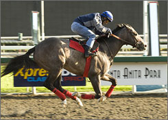 The Pamplemousse, guided by jockey Alex Solis during a training run at Santa Anita Park on March 25, will face off against Pioneerof the Nile in Saturday's Santa Anita Derby.