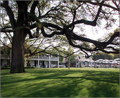 "The ""Big Oak Tree"" sits in front of the clubhouse of the Augusta National Golf Club, which was built in 1854 by the owner of the then indigo plantation."