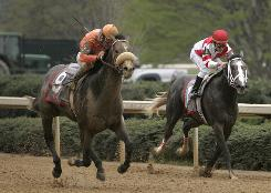 Win Willy and jockey Cliff Berry, left, pass Old Fashioned and jockey Ramon A. Dominguez in the stretch to win the Rebel Stakes at Oaklawn Park in Hot Springs, Ark., in March. The two horses will face off again in the Arkansas Derby.
