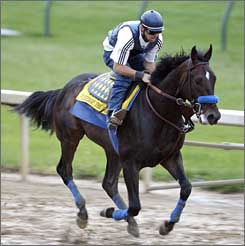 Pioneerof the Nile works out at Churchill Downs.