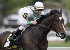 Calvin Borel, who guided Rachel Alexandra to a Kentucky Oaks victory, said he'd ride the filly if she's entered in the Preakness.