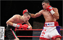 Juan Manuel Lopez, right, connects against Steven Luevano during a WBO featherweight title fight on Jan.  23. Lopez won via TKO in the seventh round.