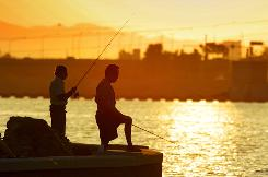 Tempe Town Lake in Phoenix provides excellent opportunities for some urban fishing.