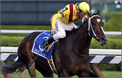 Rachel Alexandra, here ridden by Calvin Borel at the Woodward Stakes, will face off with Zenyatta on April 9 in the $5 million Apple Blossom Invitational.