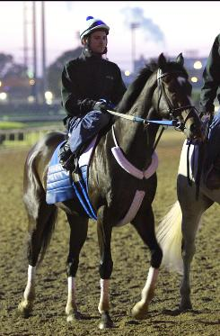 Rachel Alexandra, winner of the 2009 Preakness Stakes, is led off the track after an early morning workout at Churchill Downs on April 29 in Louisville