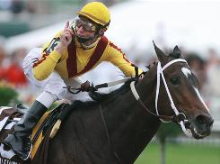 Rachel Alexandra gallops into retirement