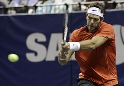 Juan Martin del Potro of Argentina powers past Lleyton Hewitt of Australia 6-2, 6-3 onFriday to reach the semifinals of the SAP Open in San Jose.