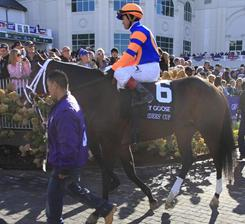 Stay Thirsty, with Javier Castellano as the jockey, will look to make a name for himself heading into the Kentucky Derby.