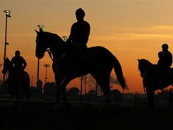 Horses wait to enter the track during the morning exercise session in preparation for the 137th Kentucky Derby.