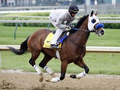 Sway Away, working out this month, is in the Preakness Stakes field after missing out on the Kentucky Derby.