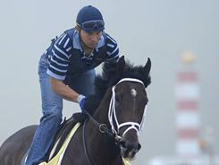 Non-Kentucky Derby horses have struggled at the Preakness, but Dance City, ridden by Obed Perez during a workout, could change that.