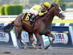 Union Rags, with Javier Castellano aboard, won the Grade 1 Champagne Stakes at Belmont Park on Oct. 8 in his tuneup for the Breeders' Cup Juvenile on Saturday.