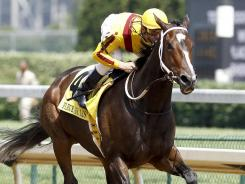 Rachel Alexandra, racing here in the Fleur de Lis Handicap in June 2010, became the first filly in 85 years to win the Preakness in 2009.