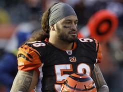 Cincinnati Bengals linebacker Rey Maualuga has been charged with assault in Ohio.