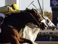 Union Rags, left, was edged by a nose by Hansen in the Juvenile race at the Breeders' Cup last November.