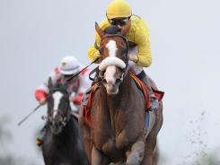Union Rags, ridden by Julien Leparoux, wins the Fountain of Youth Stakes by four lengths Sunday at Gulfstream Park.