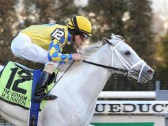 Hansen, ridden by Ramon A. Dominguez, came from behind to win going away at Saturday's Gotham Stakes in New York.