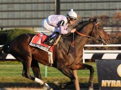 Ron the Greek captured a win at the Santa Anita Handicap, beating out runner-up Setsuko by three-and-a-half lengths.