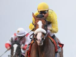 Ridden by Julien Leparoux, Union Rags won the Fountain of Youth event at Gulfstream Park in late February.