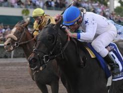 Take Charge Indy, ridden by Calvin Borel (blue helmet), wins the Florida Derby at Gulfstream Park on Saturday.