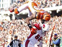 Cincinnati Bengals wide receiver Jerome Simpson flips flips for a touchdown over Arizona Cardinals linebacker Daryl Washington on Dec. 24, 2011.