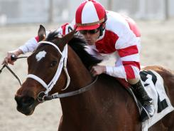 Havre De Grace, ridden by jockey Ramon Dominguez, won the $150,000 New Orleans Ladies horse race last month, but an injury will force the mare to be retired.