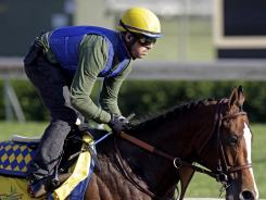 Exercise rider George Alvarez takes Kentucky Derby entrant Bodemeister for a workout at Churchill Downs on Wednesday.