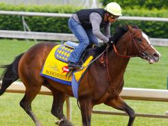 Bob Baffert-trained Bodemeister, galloping at Churchill Downs on April 27, heads into the Derby at 4-1 odds.