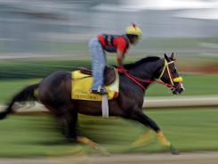The speed of Trinniberg, training Tuesday, could have been a major impact on the Derby.